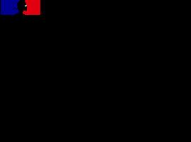 MESURE D'AIDE 2021 : PRIME ENTREPRENEURS QUARTIER